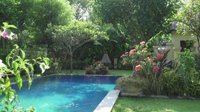 The camera moves on a tropical garden with the pool lengthways the blossoming trees. Bali. Indonesia. The camera moves on a tropical garden with the pool stock video footage