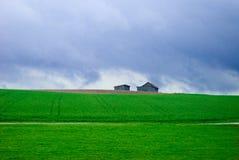 Camera nel campo e nel cielo blu verdi Fotografia Stock