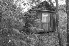 Camera nel legno Fotografia Stock