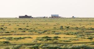 Camera nelle steppe del Kazakistan Fotografia Stock