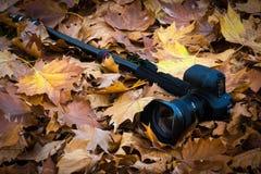 Camera op een monopoda in de herfst Stock Afbeelding