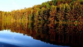 Camera opzij van aluminiumboot en pannen net om bomen te openbaren stock footage