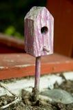 Camera per gli uccelli Immagini Stock Libere da Diritti