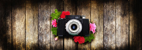 The camera is a rarity to use as a background. Geranium flowers Royalty Free Stock Image