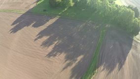 Camera rotating 360 over morning farmland landscape after sunrise with shadows, aerial view stock video