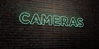 CAMERA'S - Realistisch Neonteken op Bakstenen muurachtergrond - 3D teruggegeven royalty vrij voorraadbeeld Stock Fotografie