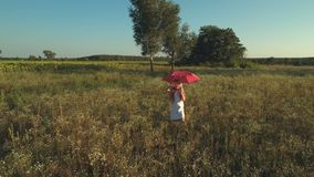 Happy little girl walks with red umbrella on the meadow. The camera shoots from behind. Little girl wearing white dress walks with the polka dot red umbrella stock video