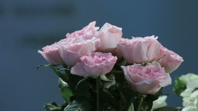 Camera shoots flowers of the roses, bouquet in motion. For use as a background stock footage