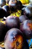 Pile palmyra fruit. Camera shot on pile palmyra fruit Stock Images