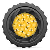 Camera shutter with bees and honeycomb Royalty Free Stock Images
