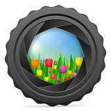 Camera shutter with tulips Stock Images