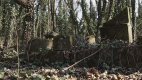 Camera slide on jewish cemetery with matzevah stock video footage