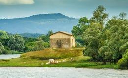 Camera sul fiume Rodano Fotografia Stock