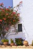 Camera tipica con i vasi da fiori in Mallorca, Spagna Fotografia Stock