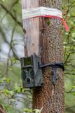 Camera trap. Remotely activated camera trap equipped with a motion sensor or an infrared sensor Stock Photo