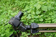 The camera on the tripod among green plants Stock Images