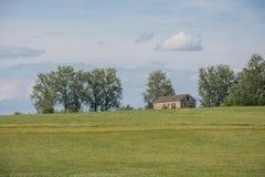 Camera in un campo di estate Immagine Stock