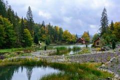 Camera vicino al lago nella foresta, giorno di autunno Fotografie Stock Libere da Diritti