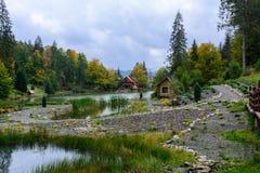Camera vicino al lago nella foresta, giorno di autunno Immagini Stock