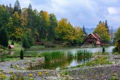 Camera vicino al lago nella foresta, giorno di autunno Fotografia Stock Libera da Diritti