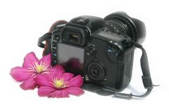 Camera white background. The camera with colors on a white background Royalty Free Stock Photography
