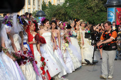 Cameraman and brides. Greater group of beautiful happy brides and cameraman Royalty Free Stock Photo