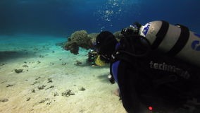 Cameraman diver swimming on sandy bottom deep underwater in Red sea. stock footage