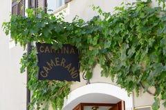 Camerano-Weinkellereizeichen mit grünen Ranken in Barolo, Italien Lizenzfreies Stockfoto