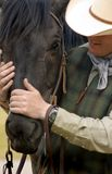 Camerati del cowboy Fotografia Stock