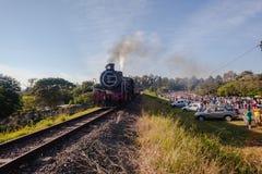 Camerati Marathon Hillcrest del treno a vapore Fotografia Stock