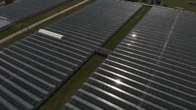 Cameravlieg over de serres Luchtschot Meetkunde in industriële productie Perfectionisme in landbouw stock videobeelden