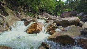 Cameravliegen over Krachtige Bergrivier onder Tropisch Bos stock video