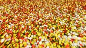 Cameravlucht over een eindeloos kleurrijk bloemgebied op een duidelijke Zonnige de zomerdag Mooie natuurlijke lijnachtergrond stock footage
