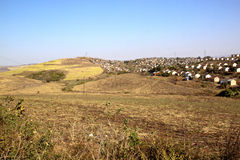 Camere di Towship di basso costo che confinano Sugar Cane Field Immagine Stock Libera da Diritti