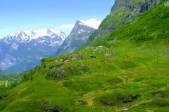 Camere in Norvegia Fotografia Stock