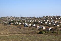 Camere rurali di basso costo che confinano Sugar Cane Field Fotografie Stock Libere da Diritti