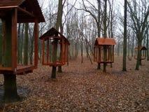 Camere sui tronchi degli alberi Fotografie Stock Libere da Diritti