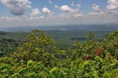 Cameron Bluff Overlook at Mount Magazine. _ Arkansas`s highest point stock photos