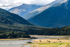 Cameron Flat Camping Ground, Mount Aspiring National Park, New Zealand Stock Image