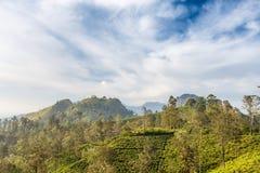 Cameron Highlands Ansicht von der des Bergkleinen Adams Spitze Lizenzfreies Stockbild