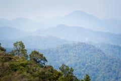 Cameron Highlands Gunung Jasar que trekking imagem de stock royalty free