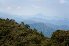 Cameron Highlands Gunung Jasar que trekking fotografia de stock royalty free