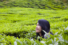 Happy woman in nature(tea plantation), Cameron highlands, Malaysia. Stock Image