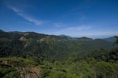 Cameron Highlands Panorama imagem de stock royalty free