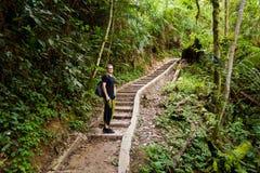 Cameron Highlands Parit Falls som trekking arkivbilder