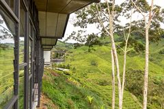 CAMERON-HOCHLÄNDER, MALAYSIA, AM 6. APRIL 2019: Teemitte BOH Sungai Palas bietet szenische Ansicht mit Café und Geschäft, populär lizenzfreies stockbild