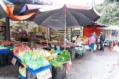 CAMERON-HOCHLÄNDER, MALAYSIA, AM 6. APRIL 2019: Tourist und kaufendes frisches Landwirtschaftserzeugnis der Käufer vom Straßensta stockbilder