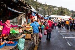 CAMERON-HOCHLÄNDER, MALAYSIA, AM 6. APRIL 2019: Tourist und kaufendes frisches Landwirtschaftserzeugnis der Käufer vom Straßensta stockfoto