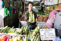 CAMERON-HOCHLÄNDER, MALAYSIA, AM 6. APRIL 2019: Tourist und kaufendes frisches Landwirtschaftserzeugnis der Käufer vom Straßensta lizenzfreie stockbilder