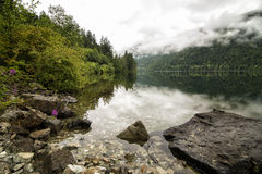 Cameron Lake nach dem Regen Stockbild